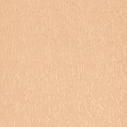 Жалюзи вертикальные ФОКУС-04 ПЕРСИК с карнизом и тканью - цена за 1 кв. метр включает всё