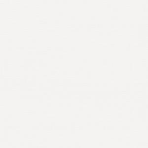 ROLL от TM FOROOM -  РЕСПЕКТ БЛЭКАУТ DM 01 БЕЛЫЙ - ТКАНЬ ДЛЯ РУЛОННЫХ ШТОР 4 КАТЕГОРИИ