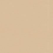 ROLL от TM FOROOM -  РЕСПЕКТ DM 35 АБРИКОС - ТКАНЬ ДЛЯ РУЛОННЫХ ШТОР 2 КАТЕГОРИИ