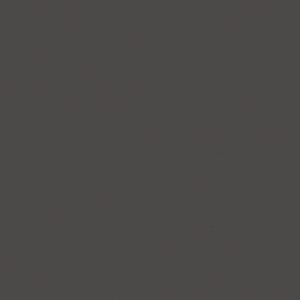 ROLL от TM FOROOM -  РЕСПЕКТ DM 88 ТЕМНОСЕРЫЙ - ТКАНЬ ДЛЯ РУЛОННЫХ ШТОР 2 КАТЕГОРИИ